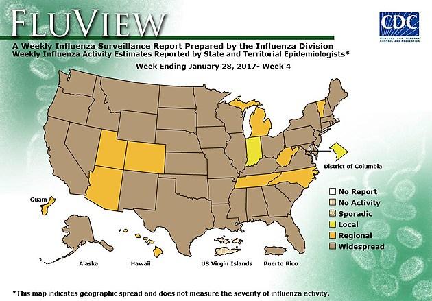 www.cdc.gov/flu/weekly/usmap.htm
