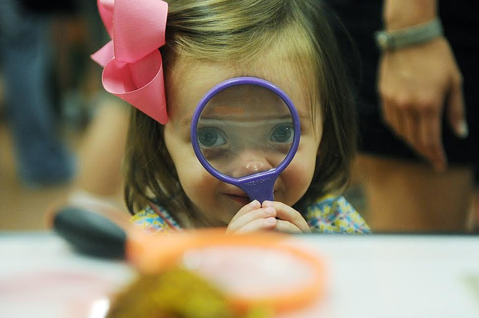 ERIN McCRACKEN / COURIER & PRESS Calyn Parker, 2, (CQ) uses a magnifying glass to look as beekeeper, David Loughrie, shows off a piece of honeycomb at Bug Fest at Wesselman Woods Nature Center on Saturday, July 19, 2014. Calyn came with her cousin to check out the different types of bugs on display at Wesselman's and learn how they are important to our lives.